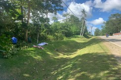 26,132sq.m Commercial Potential Lot for Sale in Ilihan,Ubay,Bohol