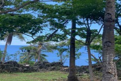 15,112sq.m Beach front property in Candabong, Anda, Bohol