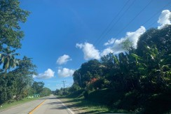 69,811sq.m Commercial Potential Lot for Sale in Ilihan,Ubay,Bohol